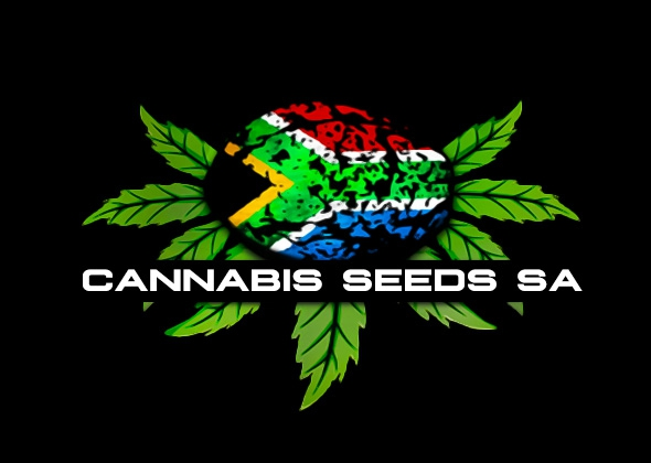 Cannabis Seeds SA